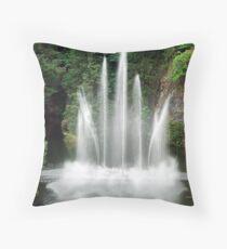 The Ross Fountain Throw Pillow