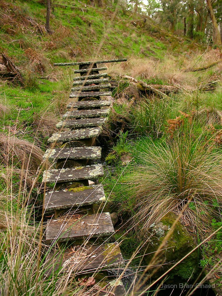 Bridge to Nowhere by Jason Bran-Cinaed