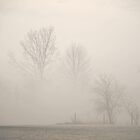 Morning  'Mistery' by Billlee
