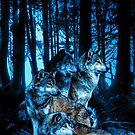 Wolfsrudel mit Bernsteinaugen von DCornel