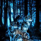 Wolf Pack with Amber Eyes by DCornel