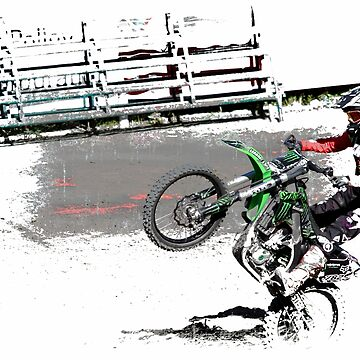 Making a Stand! - Freestyle Motocross  by NaturePrints