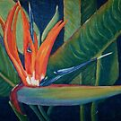 Bird of Paradise in Oils by TeAnne