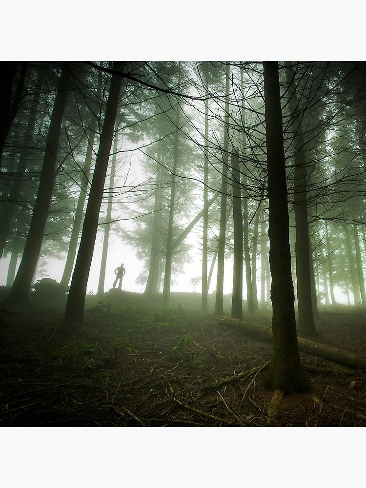 «L'homme de la Forêt» par patricemestari