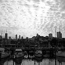Ruffled sky in the marina by almosttrinity