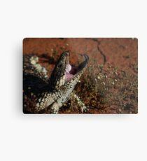 blue tongue lizard Metal Print