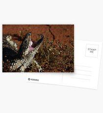 blue tongue lizard Postcards