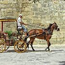 Horse & Carriage by Ludwig Wagner