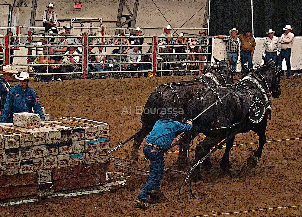 Percheron Pull by Al Bourassa