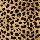 Faux Cheetah Skin Design by Digitalbcon