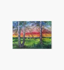Summer Sunset Over the Meadow and Birch Trees Art Board
