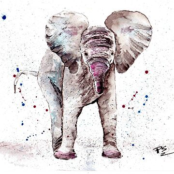 I Love Elephants. Elephant Love. Baby Elephant by PeterTheArtist