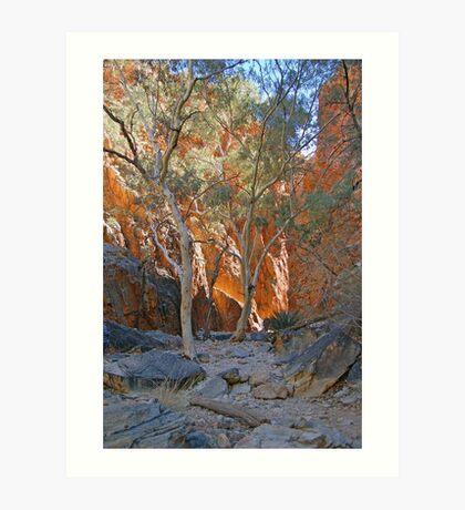 Standley Chasm. Northern Territory, Australia Art Print