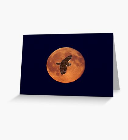 Moon Lighting Greeting Card