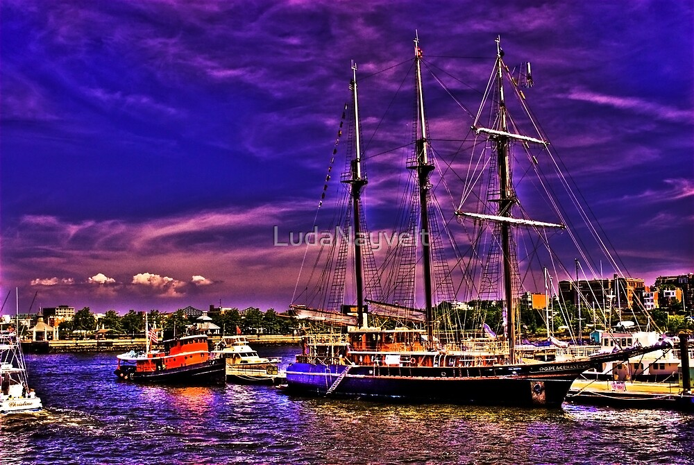 Sail Boston - Peacemaker by LudaNayvelt