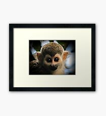 Furry ears I have :) Framed Print