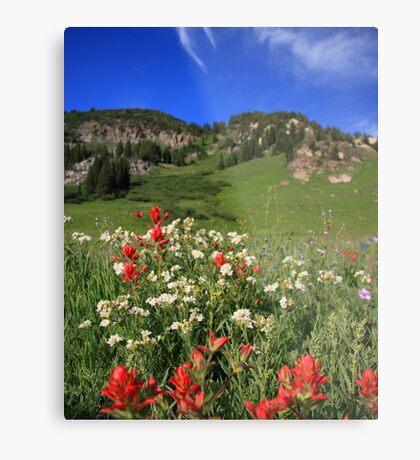 Albion Basin Wildflowers Metal Print