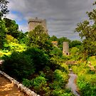 Blarney Castle and Gardens by Tom Gomez