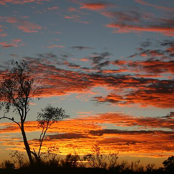 Simpson Desert Sunrise by A1000WORDS
