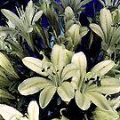 Cream Bouquet by Sue Cotton