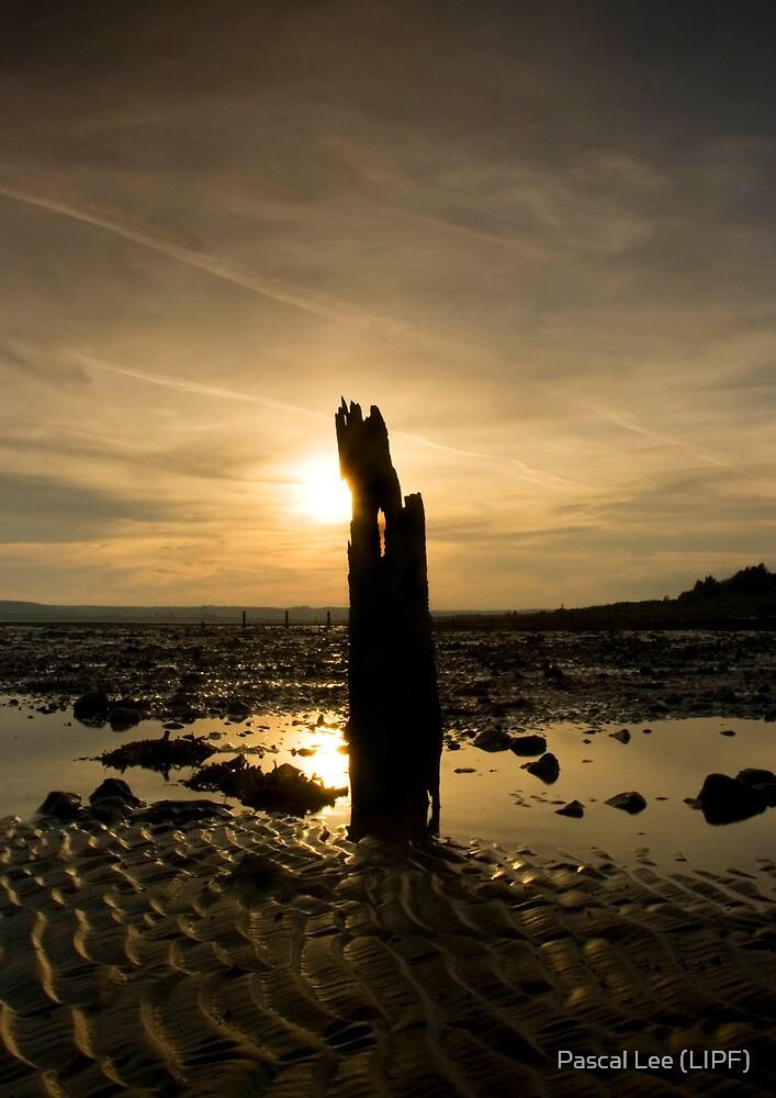 Setting Sun by Pascal Lee (LIPF)