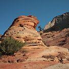 Monolith & Tree - Zion National Park by Daniel Owens