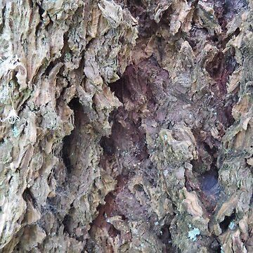Rough Rugged Tree Bark Texture Photography  by SharkaSplat