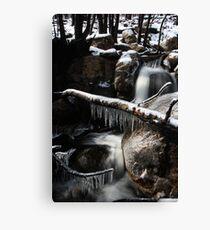 Iceage Canvas Print