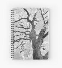 2018_12 Spiral Notebook