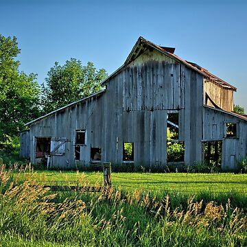 Owasa Barn Summer by LynyrdSky