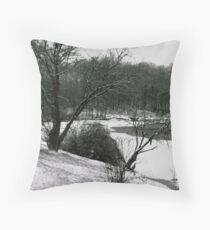 072606-24 Throw Pillow