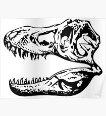 The Skull of a Tyrannosaurus Rex Poster