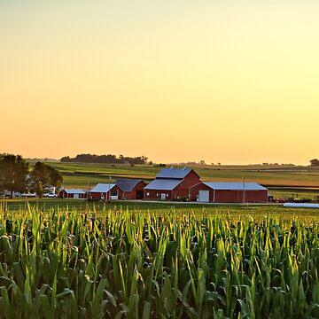 Farm In The Corn by LynyrdSky