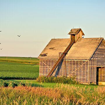 Retired Corn Crib 2 by LynyrdSky