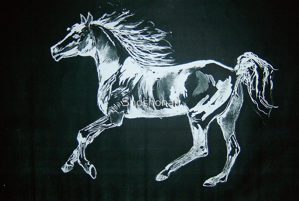 Arab Horse by Shoshonan