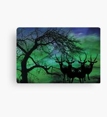 All Nature Canvas Print