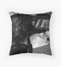 Home Security Throw Pillow