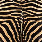 Faux Zebra Skin Design by Digitalbcon