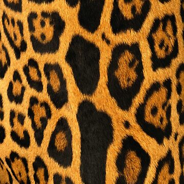 Faux Ocelot Skin Design by Digitalbcon