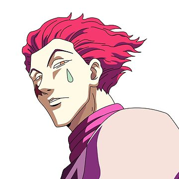 Hisoka HunterXHunter HxH Anime one piece Naruto dbz by MindRich1