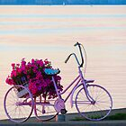 Biking on the Lake by Sandra Fortier