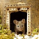 George the mouse in a log pile house by Simon-dell