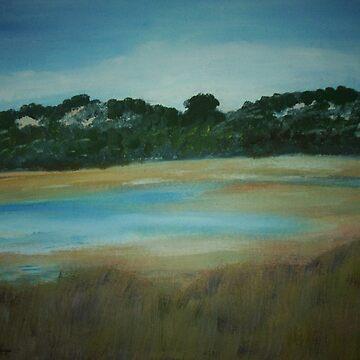 Lake Preston by christine7