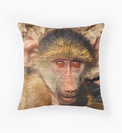 Baby Baboon, Chobe National Park, Botswana, Africa Throw Pillow