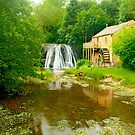 Rutter Force by Stephen Knowles