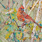 Male Cardinal Mosaic by Deborah  Benoit