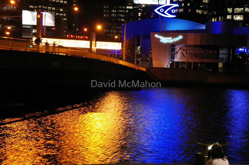 The Dawning Of The Age Of Aquariums by David McMahon