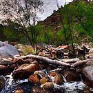 Desert creek by Aaron  Cromer