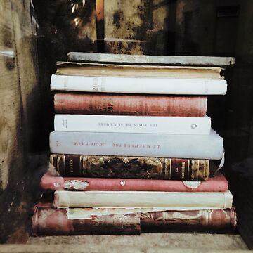 Vintage Books by mrsaraneae
