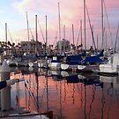 Marina Sunset Reflection by Gloria Abbey